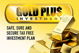 Gold Plus Investment