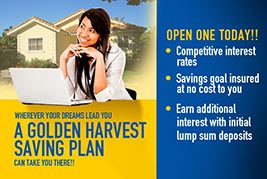 Golden Harvest Saving Plan